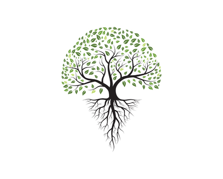 Baum Icon Vorlage Vektor-Illustration Design
