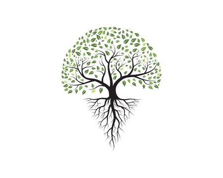 Drzewo ikona szablon wektor ilustracja projekt
