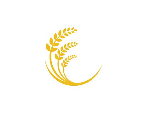 Agriculture wheat vector icon design Stok Fotoğraf - 116517493