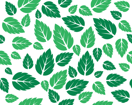 Mint fresh leaves Vector background pattern