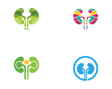 kidney vector illusrtation design logo template Illustration