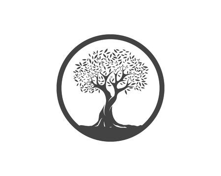 Modello di disegno di illustrazione vettoriale di olivo Vettoriali