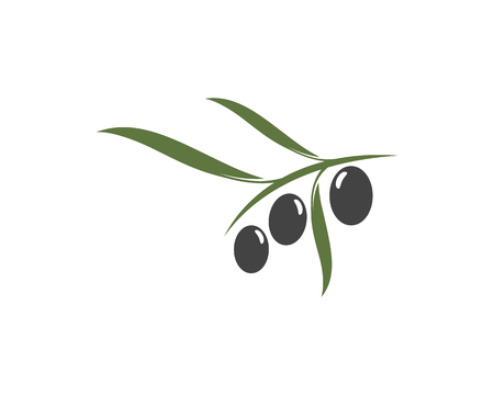 olive icon vector illustration design template