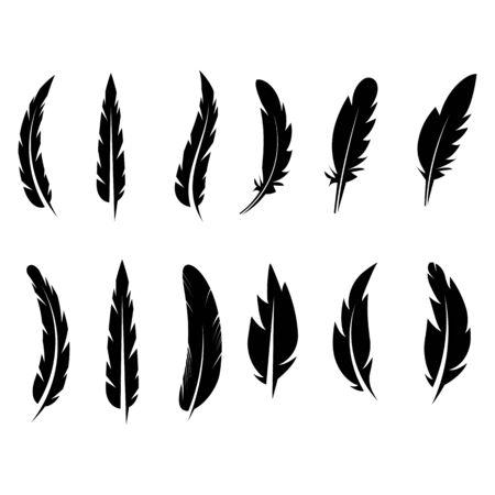 feather icon Vector Illustration design Logo template