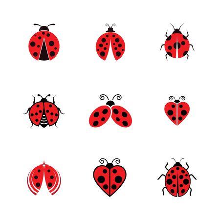 Beauty bug vector illustration icon design template