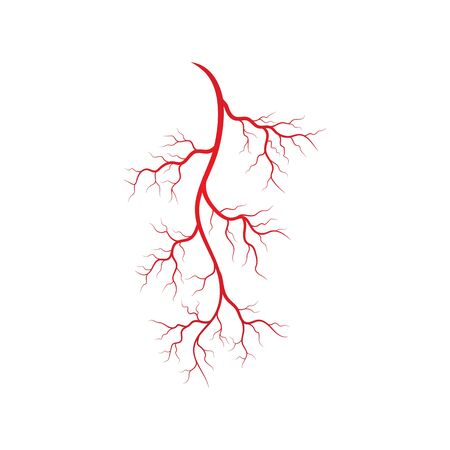 Human veins and arteries illustration design template Ilustracja