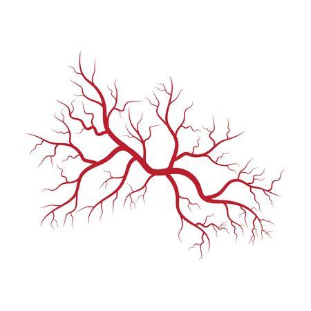 Modello di progettazione dell'illustrazione delle vene e delle arterie umane Vettoriali