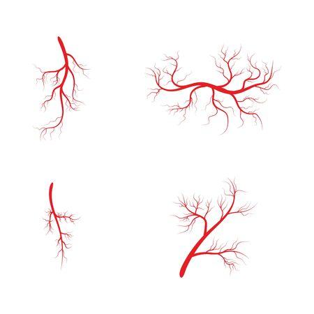 Set Veins icon Vector Illustration design template
