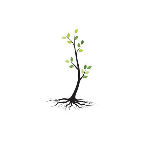 tree branch vector ilustration design template