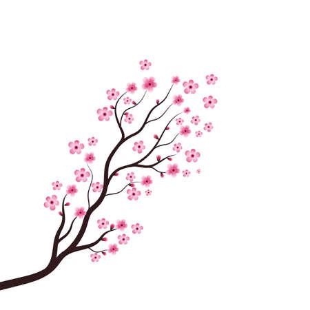 Sakura Beauty flower Vector icon illustration design
