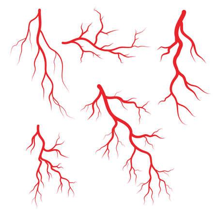 Human veins and arteries illustration design template 일러스트