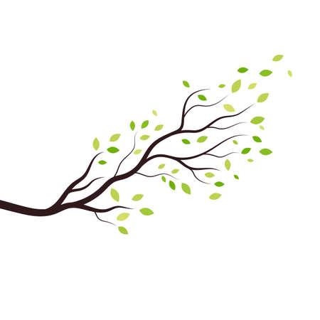 tree branch vector ilustration design template Illustration