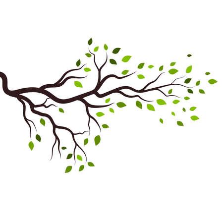 tree branch vector ilustration design template Ilustracja