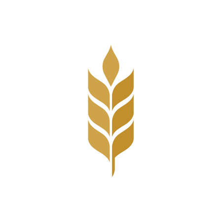 Agriculture wheat vector icon design illustration