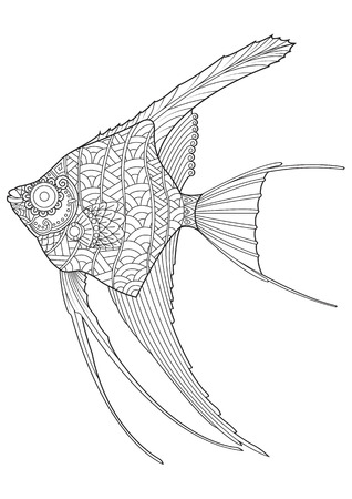 angel fish: Angel fish coloring page
