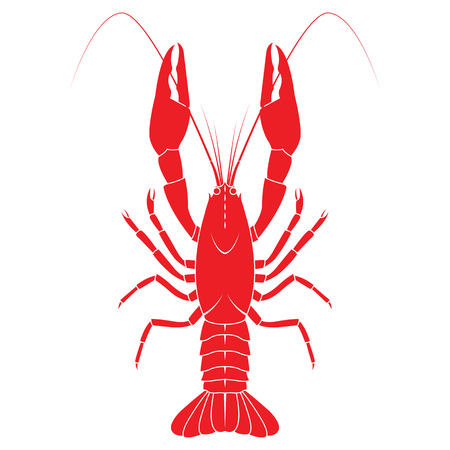 flat illustration isolated on white background. Fresh seafood icon. Illustration