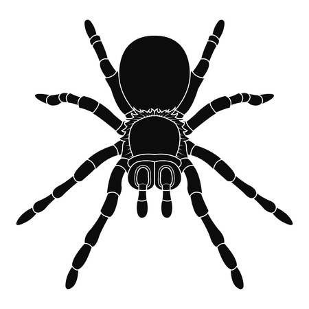 Spider silhouette icon for Halloween illustration. Illustration