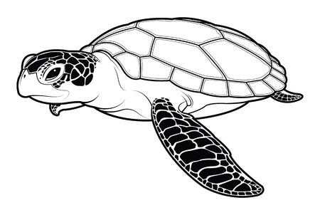 Sea turtle animal cartoon. silhouette vector illustration.
