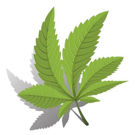 leaf logo: medical marijuana, cannabis green leaf black color logo. vector illustration.