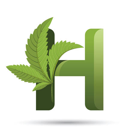 letter H. medical marijuana, cannabis green leaf logo. vector illustration.