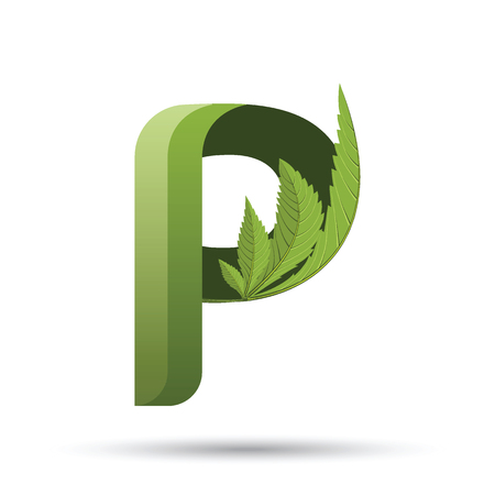 letter P. medical marijuana, cannabis green leaf logo. vector illustration. Illustration