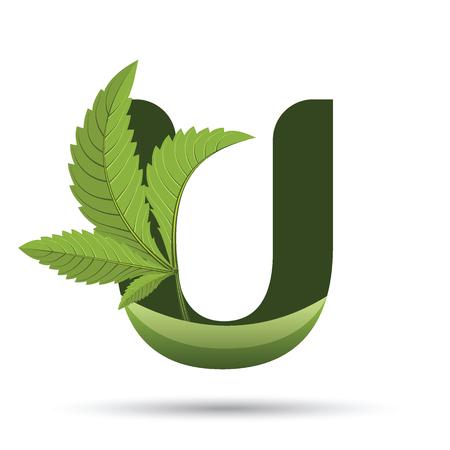 Letter U. medical marijuana, cannabis green leaf logo. vector illustration.