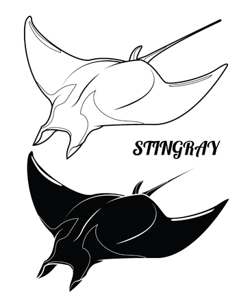 Stingray silhouette and outline. Isolated stingray on white background. Vector illustration