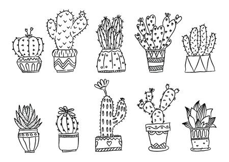 set of hand drawn cactus plants, aloe vera and cacti in pots. vector illustration.