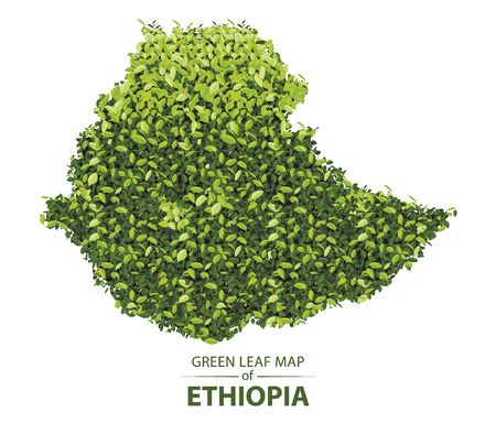 Ethiopia map made up of green leaf on white background vector illustration of a forest is conceptual of the global green environmental issues worldwide