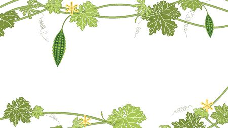 Bitter melon with green leaf and flower on white backgrpond. Bitter gourd fruits vector illustration. Vektorgrafik