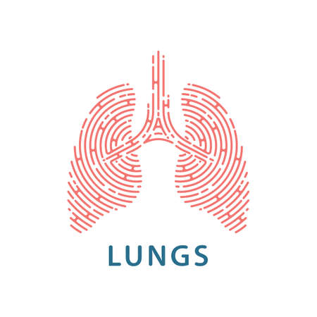 Human lungs linear icon on white background. vector illustration. 向量圖像