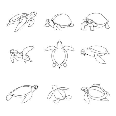 One continuous line drawing of wild desert turtle set for wildlife reserve logo identity. Single line vector draw design illustration
