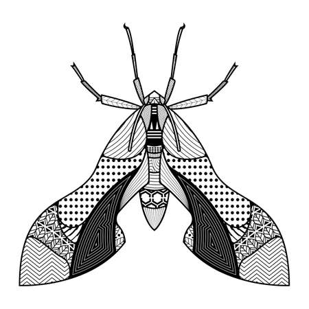 Vector bug of hand drawn insects illustrations. Abstract black coloring book. 矢量图像