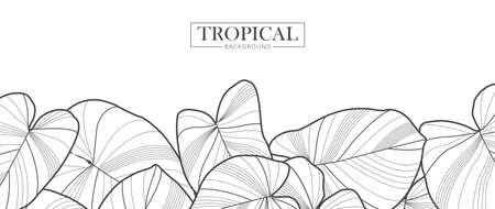 Troipical leaf natural. Linear wave background texture for print, fabric, packaging design, invite. Illusztráció
