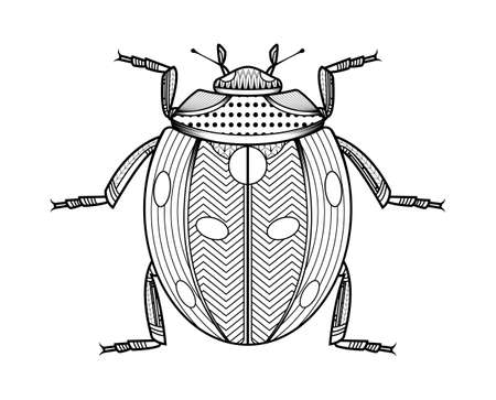 Vector bug of hand drawn insects illustrations. Abstract beetle black coloring book. Illusztráció