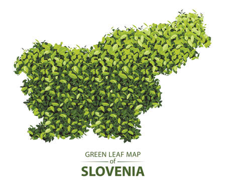 slovenia map made up of green leaf on white background vector illustration of a forest is conceptual of the global green environmental issues worldwide