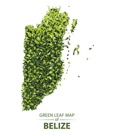 Belize map made up of green leaf on white background vector illustration of a forest is conceptual of the global green environmental issues worldwide 矢量图像