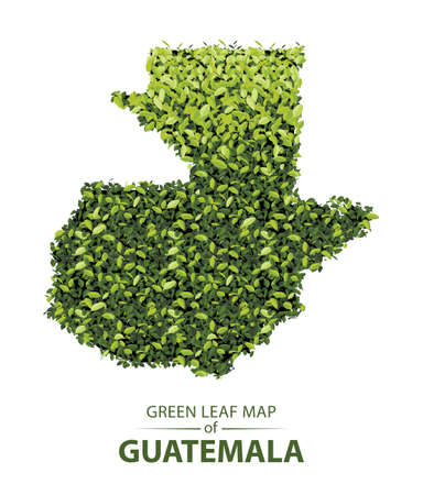 Guatemala map made up of green leaf on white background vector illustration of a forest is conceptual of the global green environmental issues worldwide 矢量图像