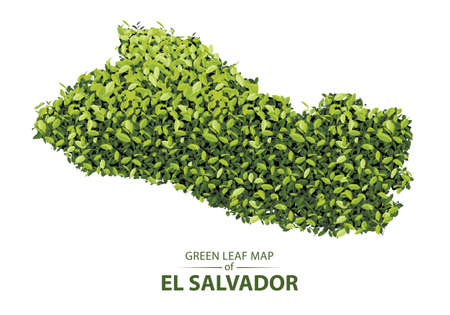 El Salvador map made up of green leaf on white background vector illustration of a forest is conceptual of the global green environmental issues worldwide