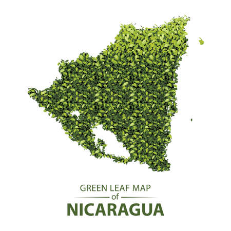 Nicaragua map made up of green leaf on white background vector illustration of a forest is conceptual of the global green environmental issues worldwide