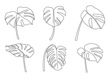Continuous line drawing monstera leaves set. Minimalism art. vector illustration.