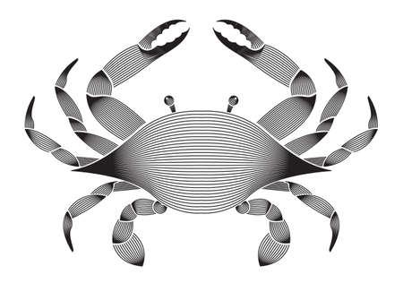 Abstract illustration geometric linear of Crab vector. 矢量图像