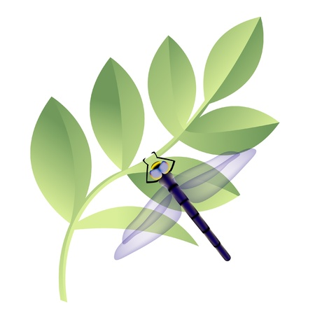 darning: dragonfly with leaves