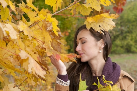 young woman and yellow autumn leaves Stock Photo - 16588581
