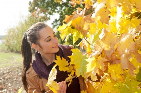 young woman looks through yellow autumn leaves Stock Photo - 16588576
