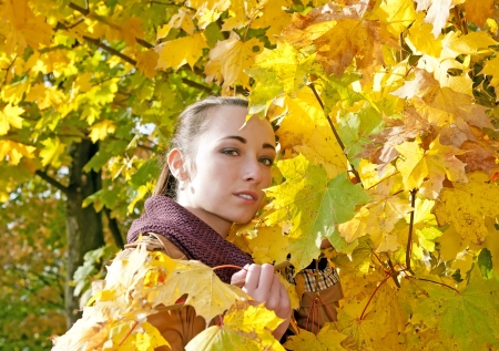young woman looks through yellow autumn leaves Stock Photo - 16588582