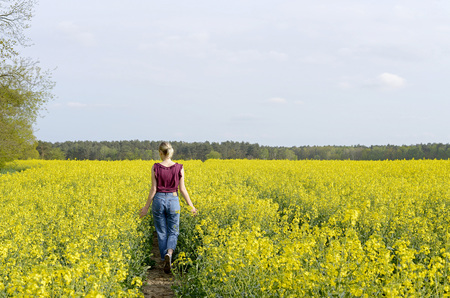 dreamy young woman  in the rape field, rear view