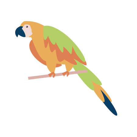 Green orange Tropical parrot seating on branch flat vector isolated illustration icon