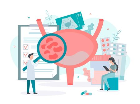 Diagnosis and treatment of bladder diseases, inflammation, ultrasound, urine analysis. Bladder health concept. Medical concept with tiny people. Flat vector illustration.
