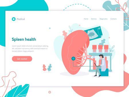 Spleen health. Web page design template.  Medical flat vector illustration.
